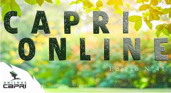 Capri Online - Edição n°41
